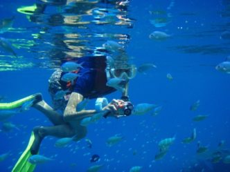Snorkeling in Qatar
